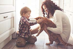 Mother and son playing with large orange tabby cat on the kitchen floor at home.