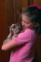 Kitten with owner image
