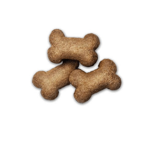 pd-hypo-treats-canine