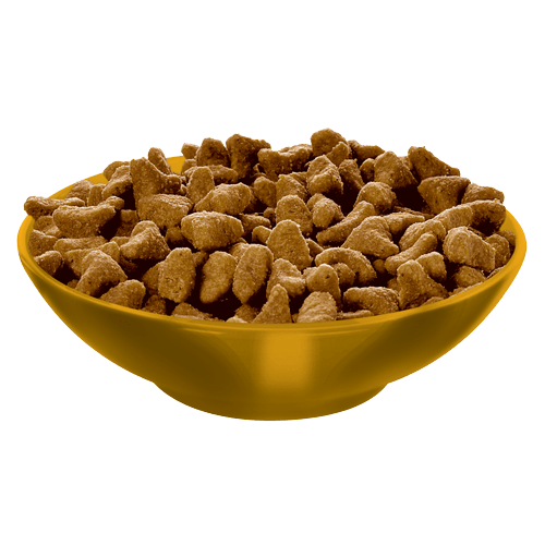 Science Diet Age Defying Cat Food